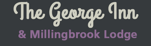 George Inn & Millingbrook Lodge Forest of Dean Accommodation logo
